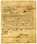 Territorial judgment, Samuel Hall v. James Ball