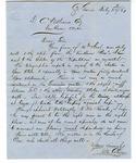 Letter, The Reverend B.M. Colman to David C. Williams
