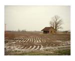 Plowed field and abandoned house