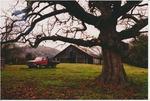 Farm truck and barn