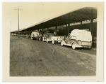 Strawberry trucks at railway loading platform, Bald Knob
