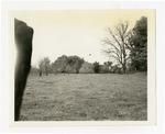 Mound at Toltec near Scott, Lonoke County