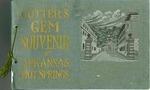 Cutter's Gem Souvenir of Arkansas's Hot Springs
