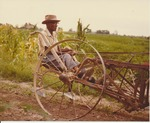 Photograph of Rufus Laine plowing in a field
