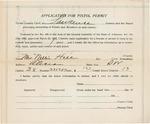 Document, Nellie Hill pistol permit application