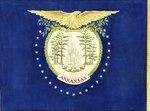 Eagle and Scenic Arkansas Flag