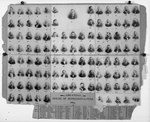 1893 House of Representatives composite photo of the Twenty-Ninth General Assembly of the State of Arkansas