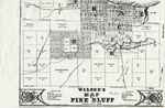 Wilson's Map of Pine Bluff, Jefferson County, Arkansas by W H.B Wilson