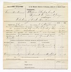 1877 August 9: Voucher, U.S. v. Commodore Owens, violation of internal revenue laws; includes cost of mileage, feeding one prisoner, and travel expenses; Ed Burns, posse comitatus; Ben Smith, guard; Thomas Newcomb and John Newcomb, witnesses; served by J.C. Wilkinsons; Stephen Wheeler, commissioner