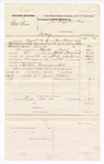 1877 August 29: Voucher, U.S. v. Phillip Brown, larceny; includes cost of mileage, feeding one prisoner, and one guard; C.F. Helens Durant Jackson, witnesses; Bass Reeves, posse comitatus; James Brodie, guard; served by Zack Williams, U.S. deputy marshal; James Brizzolara, commissioner