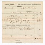 1877 November 17: Voucher, U.S. v. Samuel Rew, introducing liquor; includes cost of mileage, feeding one prisoner, and one guard; Gabriel Jimmerson and One Johnson, witnesses; George Scott, posse comitatus; James Newcomb, special deputy; served by George Williams, U.S. deputy marshal; Stephen Wheeler, commissioner
