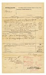 1878 July 16: Voucher, U.S. v. Pat Nail, larceny in the Indian Country; includes cost of mileage, feeding one prisoner, and one guard; Willonel R. Ayers, posse comitatus; Eugene Walker, guard; Pryer Allen, William Colbert, and Peter Wright, witnesses; served by C.C. Ayers, U.S. deputy marshal; D.P. Upham, U.S. marshal; Stephen Wheeler, clerk