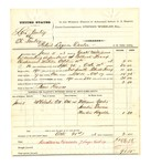 1878 October 21: Voucher, U.S. v. Levi Gentry (alias Eli Gentry), retail liquor dealer; includes cost of mileage, feeding one prisoner, and travel expenses; Bass Reeves, posse comitatus; William Yates, Sandie Erwin, and Newton Rozelle, witnesses; served by Zack Williams; C.M. Barnes, witness of signatures; two copies