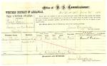 1878 June 20: Voucher, U.S. v. Phillip Brown, larceny; includes cost of per diem and mileage; Durant Jackson, witness; D.P. Upham, U.S. marshal; James Brizzolara, commissioner