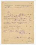 1886 January 12: Partial voucher, U.S. v. Bris Henderson, larceny; includes cost of warrant, mileage, and feeding prisoner; C.A. Golen, Jackson Tyson, Malinda Dorsey, Sina Golen, witnesses; William Fields, deputy marshal; John D. Tufts, commissioner