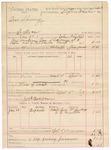 1887 April 5: Voucher, U.S. v. One Shawny, introducing spiritous liquor; includes cost of mileage and feeding prisoner; John Phillips, deputy marshal; Stephen Wheeler, commissioner; Lewis McGurlberry, E. Mathew, witnesses; Jack Brown, posse comitatus