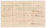 1888 July 13: Voucher, U.S. v. Shannon Foster et al., murder; includes cost of per diem and mileage; Mitchell Ellis, George Hampton, witnesses; John Carroll, U.S. marshal