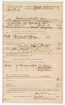 1889 July 13: Voucher, U.S. v. Charles Clark, introducing spiritous liquors; John Williams, deputy marshal; Jacob Yoes, U.S. marshal; S.S. Palmer, Jack Backham, Caleb Martin, George Adams, witnesses; Ed S. Bowman, posse comitatus; includes cost of mileage, ferriage and subsistence for self and horse