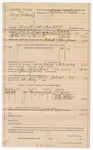 1889 July 30: Voucher, U.S. v. George Hubbard Jr., assault with intent to kill; L.P. Isbell, deputy marshal; Stephen Wheeler, commissioner; Peter Tovery, posse comitatus; T.C. Jones, Mrs. T.C. Jones, Polly Johnson, Polly Webster, witnesses; includes cost of mileage, service and feeding prisoner