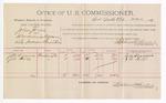 1891 June 29: Voucher, U.S. v. John Jones, introducing spirituous liquors; J.M. Sizemore, J.W. Hill, witnesses; Jacob Yoes, U.S. marshal; Stephen Wheeler, commissioner; includes cost of per diem and mileage